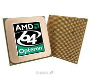 Фото AMD Opteron 250