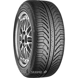 Michelin Pilot Sport A/S PLUS (255/45R19 100V)