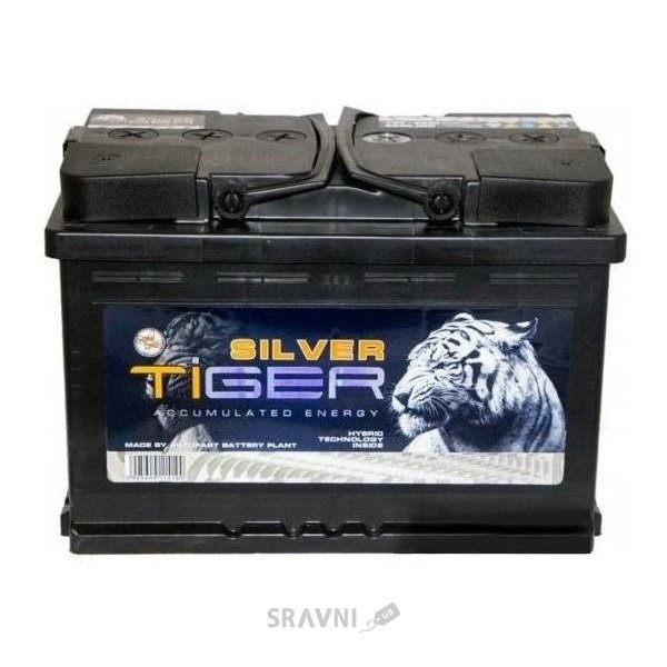 Фото Tiger Silver 6СТ-55 Аз Asia (AFS055-S01)