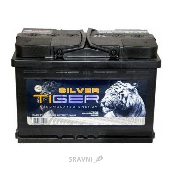 Фото Tiger Silver 6СТ-88 АзЕ (AFS088-S00)