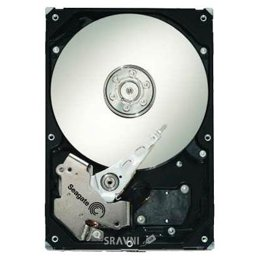 Seagate ST31000340NS