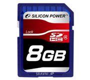Фото Silicon Power SP008GBSDH004V10